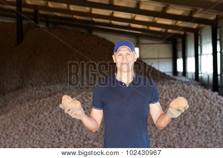 Farmer showing freshly dug potatoes