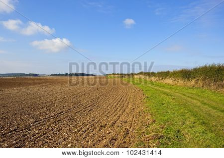 Bridleway And Plowed Field