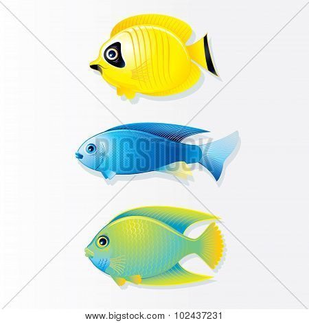 Cartoon Coral reef Fish. Vector Image