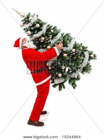 Santa Claus Carrying A Decorated Christmas Tree