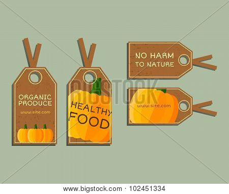 Organic farm corporate identity design with pumpkin. Branding your eco shop, company. Stickers. Mock