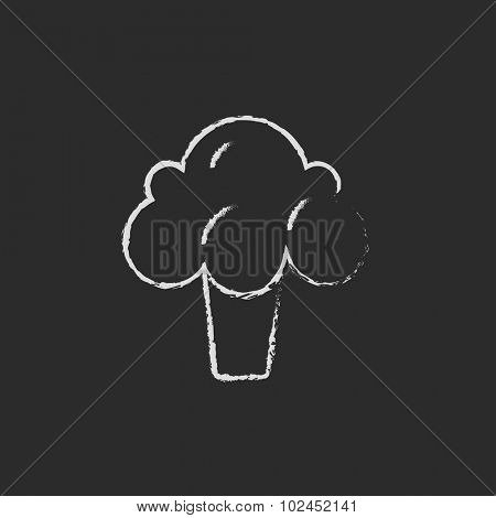 Broccoli hand drawn in chalk on a blackboard vector white icon isolated on a black background.