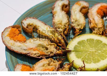 Mini Lobsters