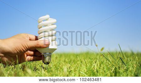 Light bulb in hand with green grass background
