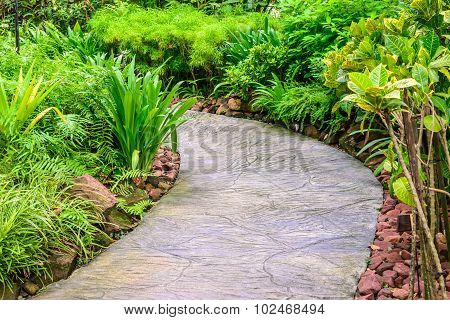Cement pathway middle of beautiful flora garden.