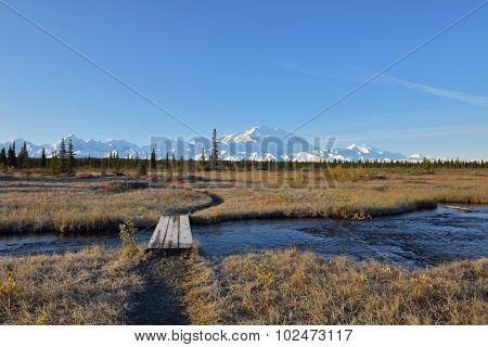Mckinley Bar Trail And Denali Mountain, Alaska