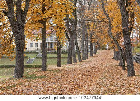FROTUNA, SWEDEN ON OCTOBER 15