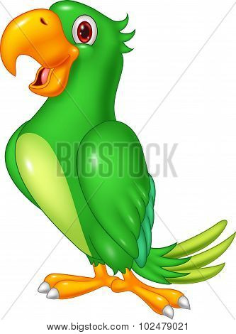 Cartoon happy parrot posing