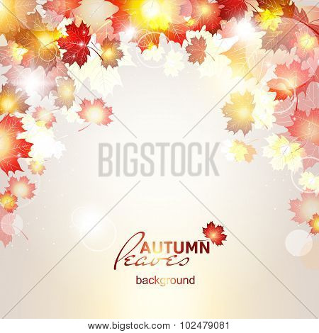 Vector illustration of beautiful autumn background with sun rays