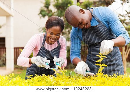 happy young african couple trimming plants at home