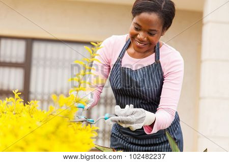beautiful young african woman trimming plants in her front yard