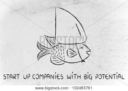 Small Fish Wearing A Fake Shark Fin, Start-up Business With Big Potential