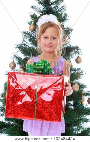 elegant girl with a gift