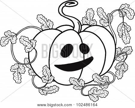 Vector Halloween Pumpkin With Scary Smile Isolated On White, Hand Drawn Graphic Jack O Lantern