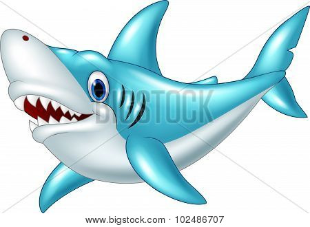 Cartoon shark isolated on white background