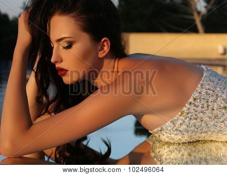 Beautiful Woman With Dark Hair In Luxurious Sequin Dress