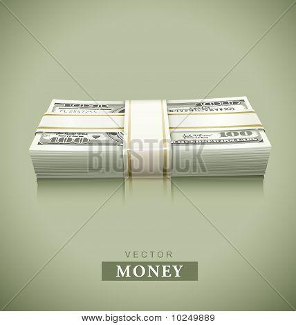 packaged bundle of money dollars