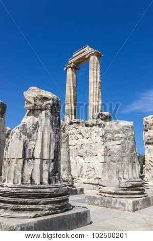 Columns In The Temple Apollo