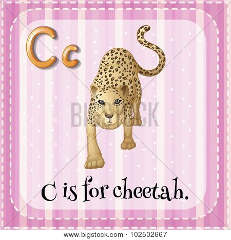 Flashcard letter C is for cheetah illustration