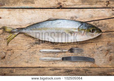 Seafood Culinary Recipe Background