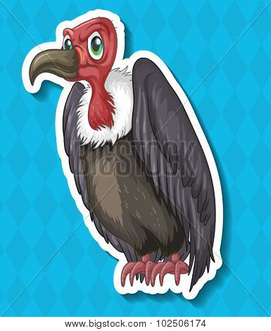 Vulture looking angry on blue background illustration