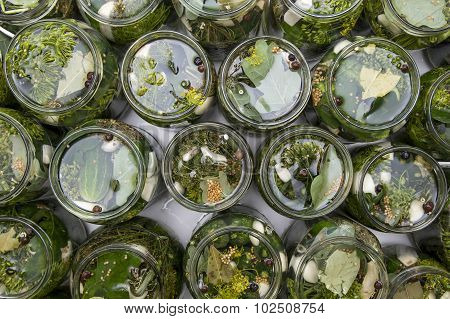 Cucumbers In Salted Water