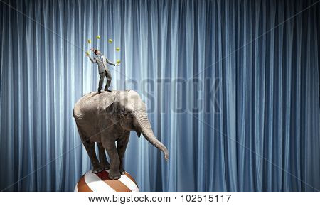 Young businessman in cap standing on elephant and juggling with balls