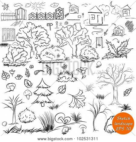 Elements of landscape in outline. Doodle sketch outdoor elements. Tree, grass, nature, bushes, leave