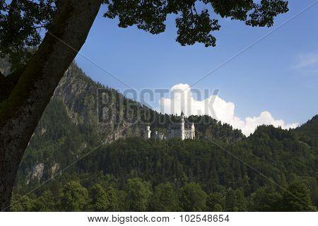 Castle Of Neuschwanstein In Bavarian Alps