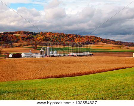 Farmland In Fall