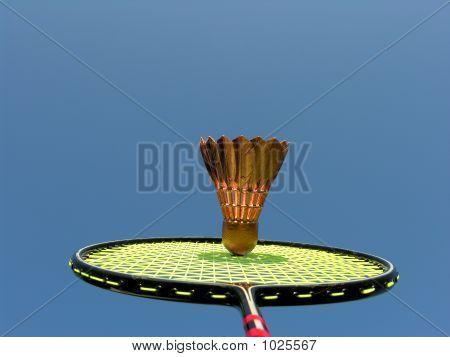 Badminton Outside