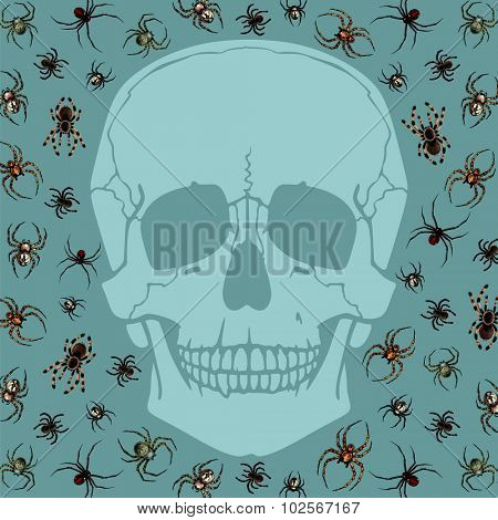 Halloween card with skull silhouette and spiders