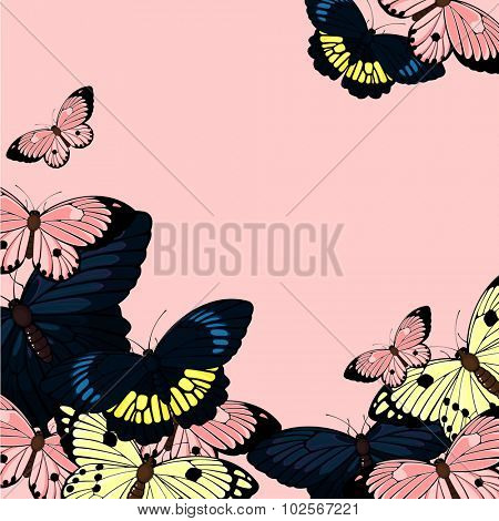 Beautiful card with butterflies, with a place for your text (raster version)