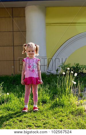 Little Girl With Tails Stands On Lawn