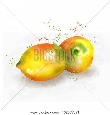 Vector watercolor lemon