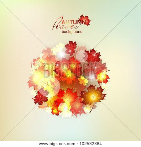 Autumn pattern with colorful translucent leaves.