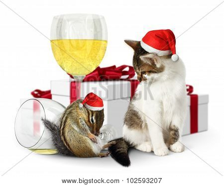 Funny Xmas Concept, Drunk Squirrel And Cat With Santa Hat And Gifts