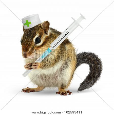 Veterinary Concept, Funny Chipmunk With Syringe And Doctor Uniform