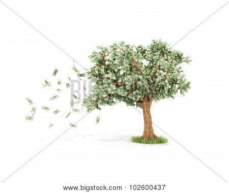 Dollar Tree With Hundred Dollar Bills And With Wind Isolated Over White
