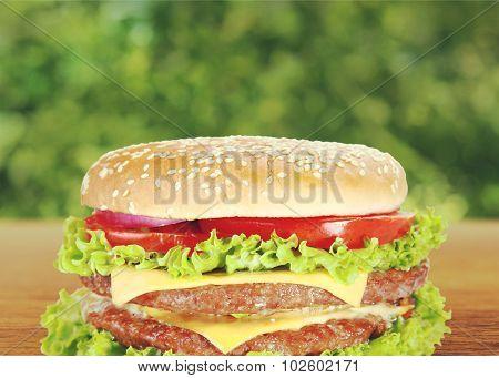Hamburger Sandwich.