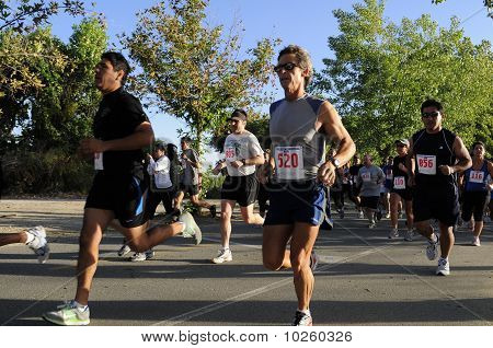 Contestants Run Hard