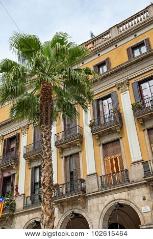 Low Angle View of Palm Tree in front of Ornate Yellow Building in Placa Reial, Barcelona, Spain