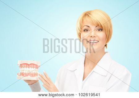 medicine, stomatology, people and dental hygiene concept - smiling female doctor with jaws model over blue background