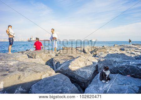 Men And Cat On Rocks At Bosphorus Bank
