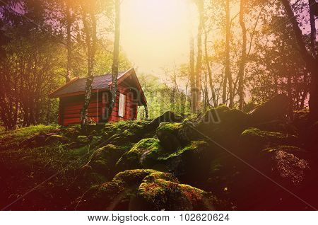 Dreamy Forest At Sunset With Wooden Hut