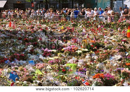 Thousands Of Flowers In Oslo, One Week After June 2011 Attack