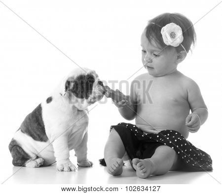 child feeding a puppy a dog bone