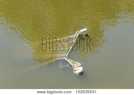 Shopping Cart Into the River