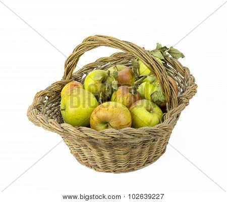 Apples and Basket