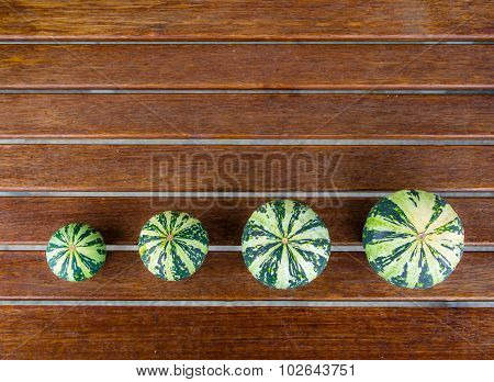 Cucurbita pepo still life green pumkins arranged